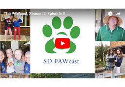 SD Middle School PAWcast - Season 2, Episode 3