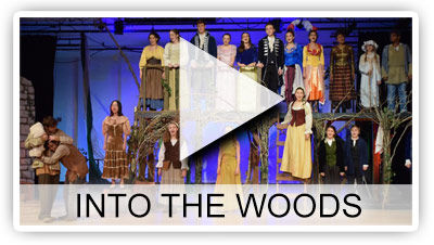 Into The Woods Photo Gallery