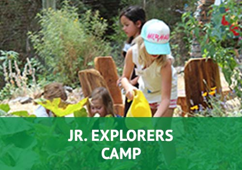 Jr. Explorers Camp