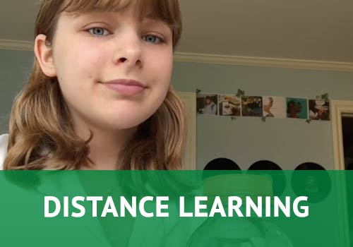 Learn more about Distance Learning at San Domenico